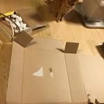 ダンボールが壊れちゃった… ~ My Cardbox is Broken Down