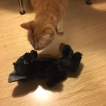 なでなでねこちゃん ~ Stuffed Toy with real Cat Voice