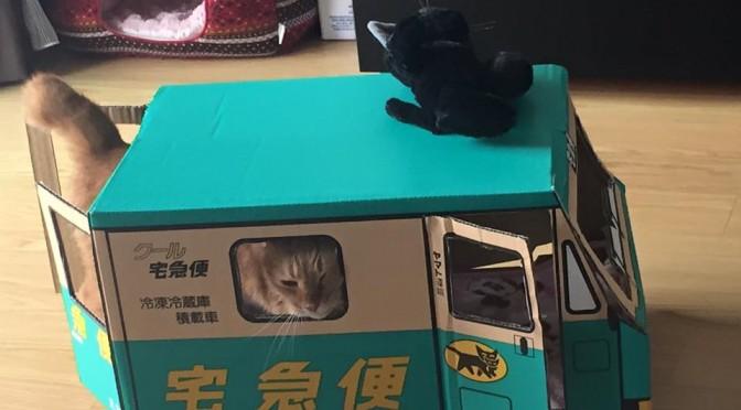 続クロネコヤマトのウォークスルーボックス ~ Kuroneko Yamato Box 2