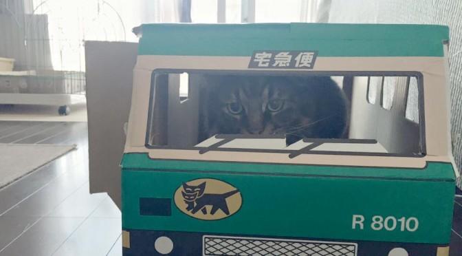 続クロネコヤマトのウォークスルーボックス レオ編 ~ Kuroneko Yamato Box 3 Leo
