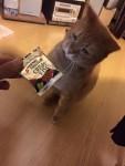 手からあげるおやつ ~ Snack from Hand