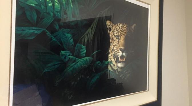 ジョウ・ナイトウのジャガー ~ Jaguar