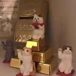 2/22 ねむりんさん基金設立! ~ Nemu-lin Fund for Cats